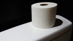 A roll of toilet paper is seen in this undated file photo. (Dean Hochman/Flickr)