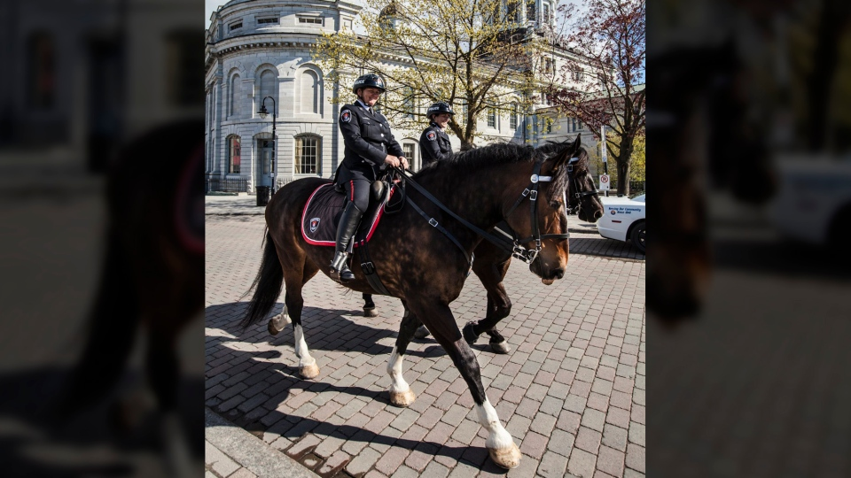 Two Kingston police officers are shown on horseback in this photo shared on Twitter by the Kingston Police Department.