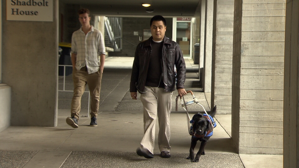 Anthony Janolino has accused a Port Coquitlam restaurant of refusing to let him dine with his certified guide dog, Vanda. Oct. 18, 2016. (CTV)