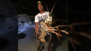 Tristan Loescher holds up a 14-pound spiny lobster caught while fishing in Bermuda, on Oct. 14, 2016. (Sanctuary Marine Bermuda via AP)