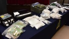 Brandon area drug bust