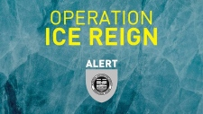 ALERT Operation ICE Reign