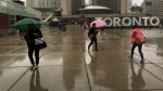 Rain falls at Nathan Phillips Square in downtown Toronto. (Joshua Freeman /CP24)
