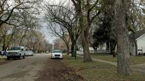 Saskatoon police vehicles sit outside a home on the 1400 block of Avenue G North on Oct. 15, 2016. A man died in the home the night previous in the city's 10th homicide of the year. (Taylor Rattray/CTV Saskatoon)