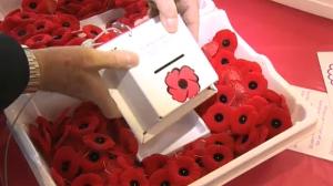 Poppy box redesign