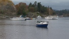 According to the city, there are 24 vessels and four floating wharves illegally situated in the Gorge. Oct. 21, 2016 (CTV Vancouver Island)