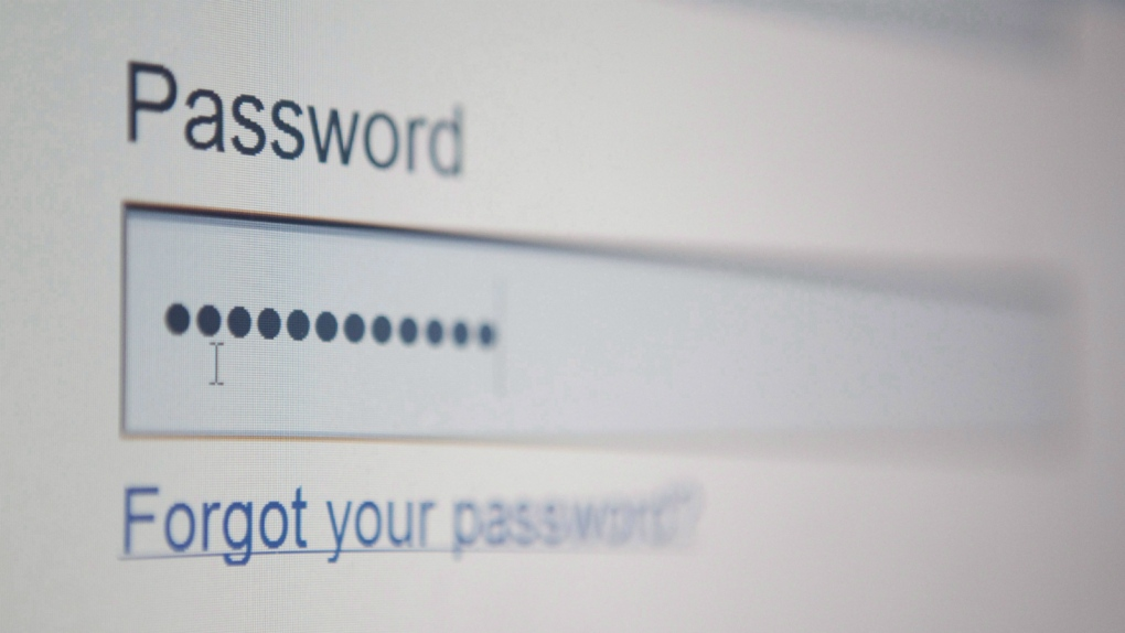 Experts remind users to never share passwords