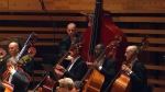 Rare octobass loaned to Montreal Symphony