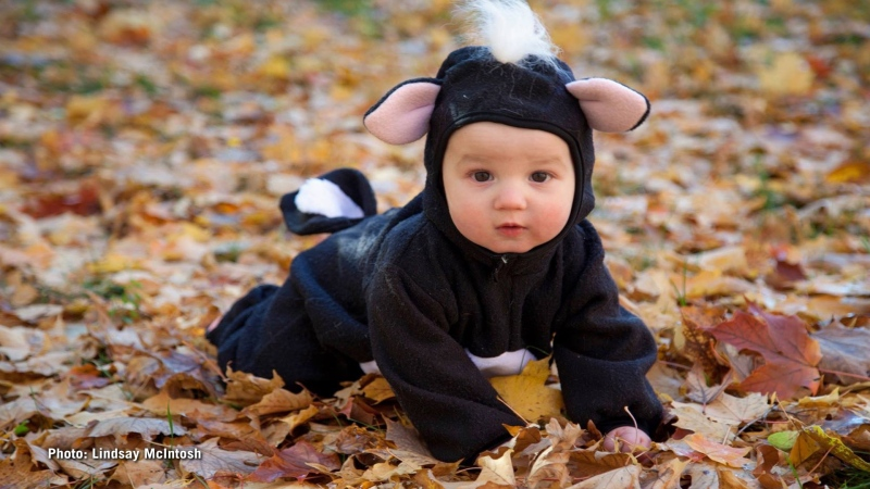 Little stinker Lucas posing for Halloween. (Photo: Lindsay McIntosh/Submitted by: CTV Viewer Danielle MacDonald)