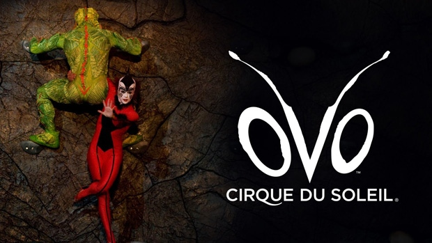 Cheap Cirque du Soleil Tickets - Discount Up to $30 on Cirque du Soleil event tickets. Explore Cirque du Soleil ticket prices, online deals, event dates, and theater seating charts. London, Ontario. Cirque Celebration. 3 Upcoming Events. Cirque du Soleil - Michael Jackson: One.