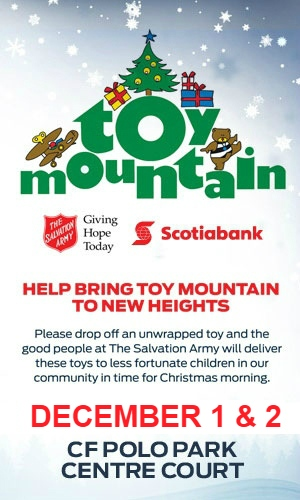 Toy Mountain 2016 Info