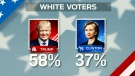 Graphic on white voters
