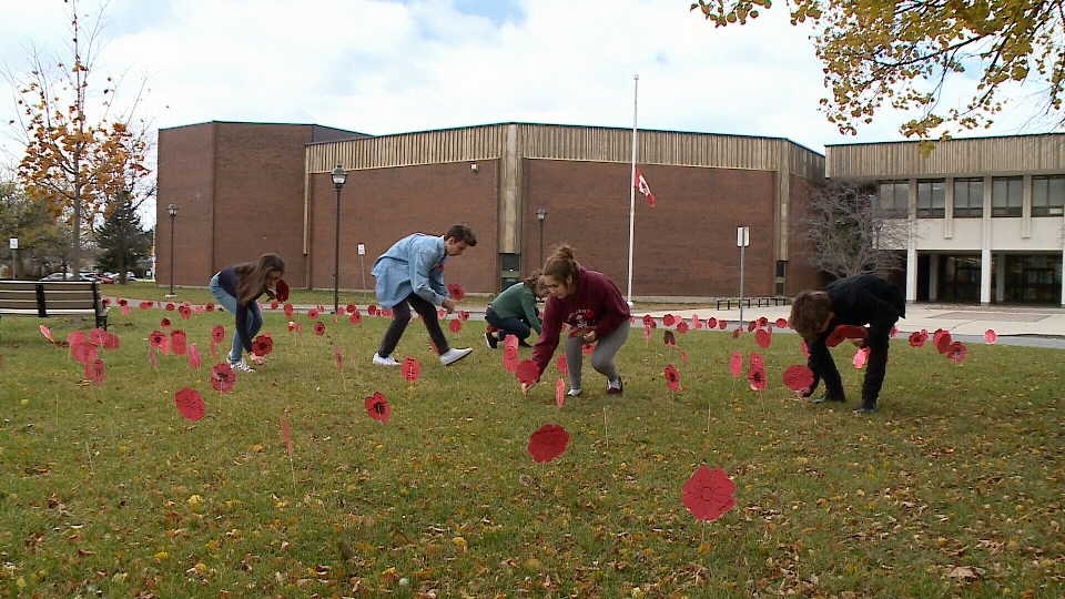 Students planting 'poppies' at Sir Robert Borden.