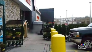 A confrontation between Vancouver police and a suspect outside a Canadian Tire is seen in this still image taken from witness video. Nov. 10, 2016.