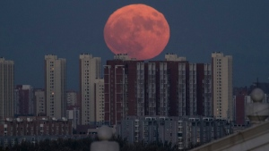 The moon rises from behind apartment buildings in Beijing, China, on Nov. 14, 2016. (Ng Han Guan / AP)