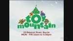 CTV Barrie: Toy Mountain launches