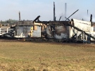 Firefighters put out hot spots, following a large barn fire in Oro-Medonte, Ont. on Tuesday, Nov. 15, 2016. (Mike Walker/ CTV Barrie)