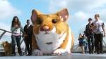 CTV News Channel: Driving the 'hamster wagon'