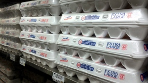 Six states lacked the legal right to challenge a California law that prohibits the sale off eggs from chickens that are not raised in accordance with strict space requirements, a federal appeals court said Thursday, Nov. 17, 2016. (AP Photo/Jeff Chiu, File)