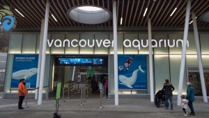 The outside of the Vancouver Aquarium is pictured in Vancouver, B.C., on Nov. 18, 2016. (Jonathan Hayward / THE CANADIAN PRESS)