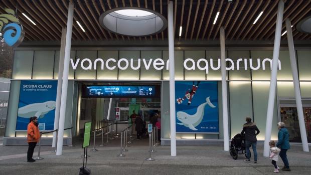 Vancouver Aquarium in Vancouver, B.C.