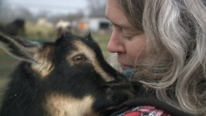 Mindy Cardinal embraces her pygmy goat, Walter, at her farm near Maugerville, N.B.