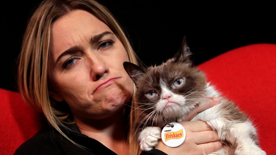 In this Nov. 14, 2016 photo, Grumpy Cat poses for photos with her owner Tabatha Bundesen in New York.  (AP Photo/Richard Drew)