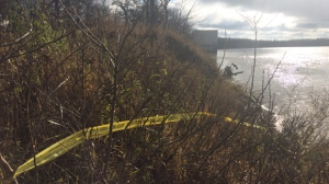 The remains were found along the Red River in East Selkirk on Oct. 22. (Beth Macdonell/CTV Winnipeg)