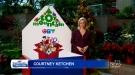 CTV's Toy Mountain presented by Aaron Acceptance & United Way's Gift Guide