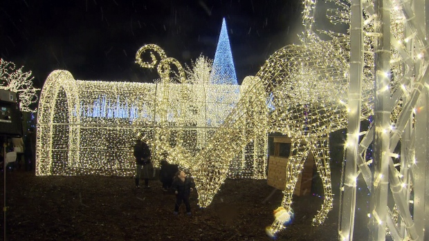 World's largest Christmas maze opens in Vancouver | CTV Vancouver News