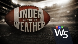 TSN's Brian Williams reports on the 104th Grey Cup in Toronto.