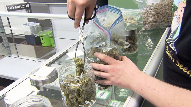 As Port Coquitlam prepares to change a bylaw putting more onus on landlords, advocates of marijuana dispensaries say the changes are being made specifically to target them.