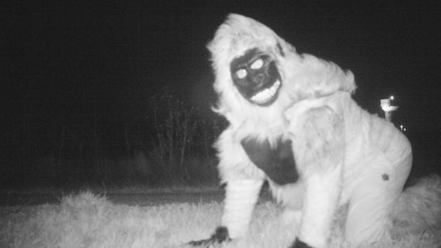 Kansas wildlife camera