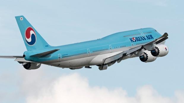 Korean Jet Escorted To German Airport After Losing Radio