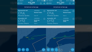 An Air Canada flight and a Porter Airlines flight were forced to circle over Lake Ontario because of a drone sighting near Billy Bishop Toronto City Airport on Friday.