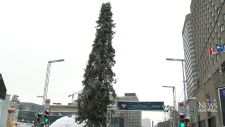 The 'ugly' Christmas tree in Montreal's Place des Arts, on Monday, Dec. 5, 2016.