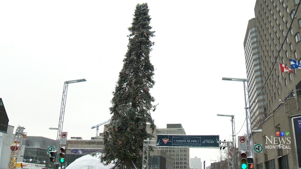 Ugly Christmas Tree.Montreal S Ugly Christmas Tree Stripped Of Decorations And