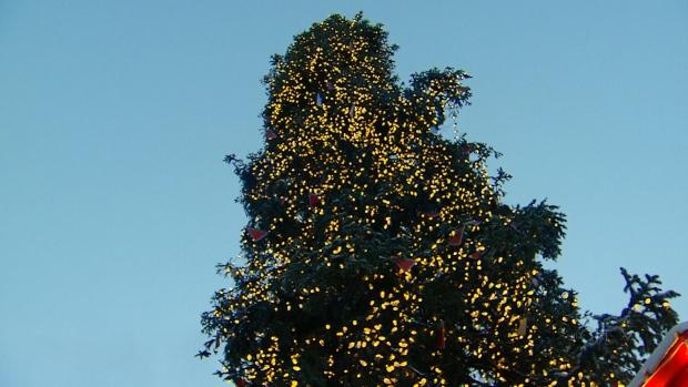 Ugly Christmas Tree.Montreal S Ugly Christmas Tree Draws In Spectators Ctv News
