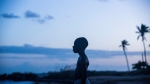 """This image released by A24 Films shows Alex Hibbert in a scene from the film, """"Moonlight."""" (David Bornfriend/A24 via AP)"""
