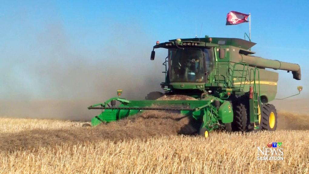 SaskCanola confident in 2016 crop