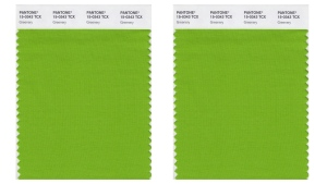 Pantone colour swatch called 'greenery'