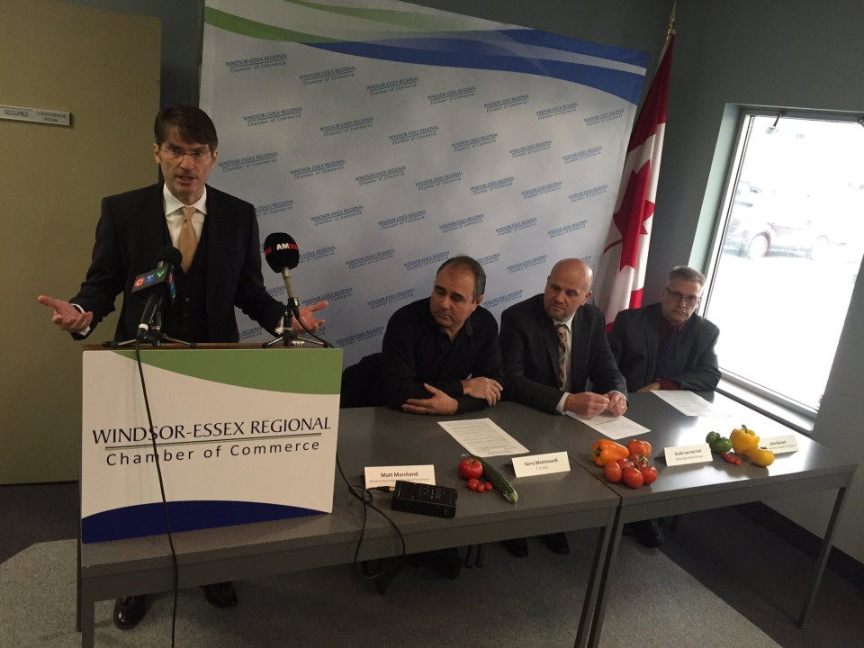 Windsor-Essex Regional Chamber of Commerce president and CEO Matt Marchand speaks at a news conference in Windsor, Ont., on Friday, Dec. 9, 2016. (Sacha Long / CTV Windsor)