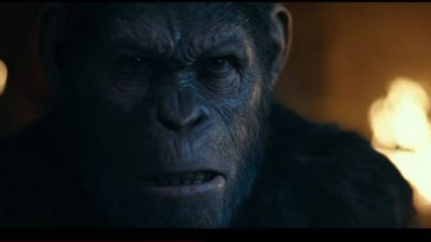 Watch the new trailer for 'War for the Planet of the Apes'