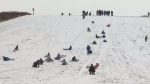 Several people seen tobogganing down a hill.