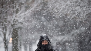A bundled up woman walks as snow falls in Vancouver, B.C., on Friday December 9, 2016. A snowfall warning is in effect for parts of the south coast and the Fraser Valley.  (Darryl Dyck/The Canadian Press)