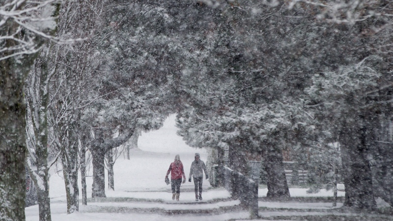 Pedestrians are framed by a canopy of trees as snow falls in Vancouver, B.C., on Friday December 9, 2016. (THE CANADIAN PRESS/Darryl Dyck)