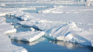 Ice floats in the Arctic near Svalbard, Norway, on April 24, 2009. (Dirk Notz via AP)