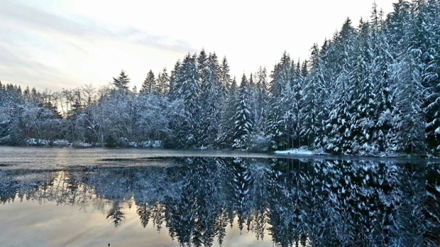 CTV viewers from across B.C. shared photos of the snowfall in their regions.