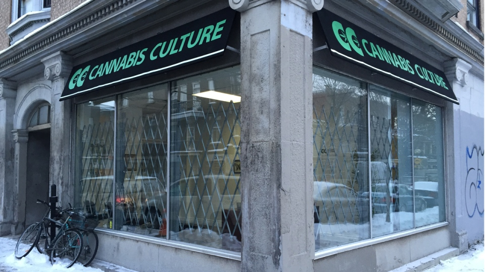 A Cannabis Culture location opened Thursday Dec. 15, 2016 at 2200 Mont Royal East. (CTV Montreal/Wayne Toplosky)
