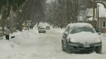 The Old Farmer's Almanac expects us to have a mild winter, while the Weather Network thinks it will be stormy. Environment Canada has yet to weigh in.